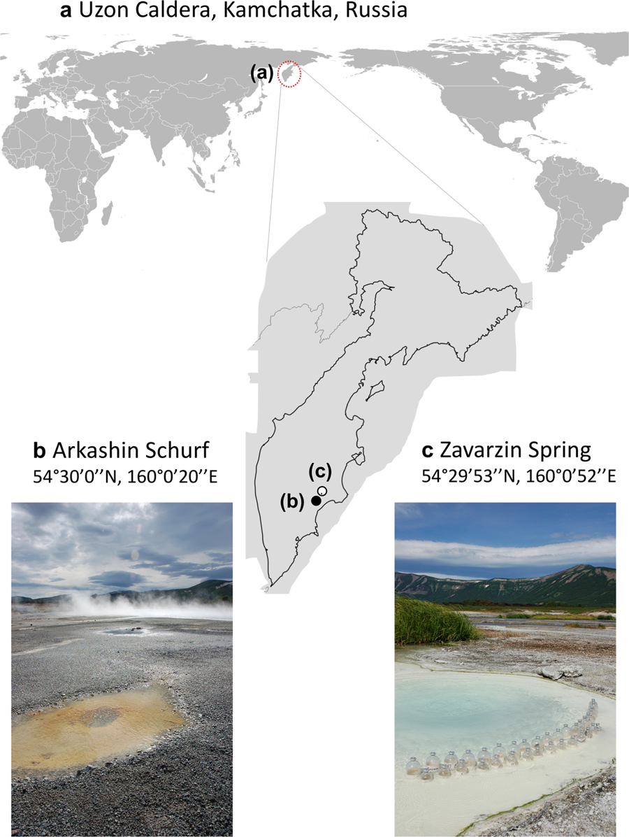 New paper from the Eisen lab on MAGs from two thermal pools in Kamchatka (great work led by Laetitia Wilkins @M_helvetiae and Cassie Ettinger @casettron)